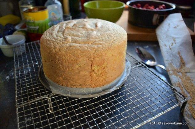 Blat de tort simplu - pandispan cu vanilie Savori Urbane (13)