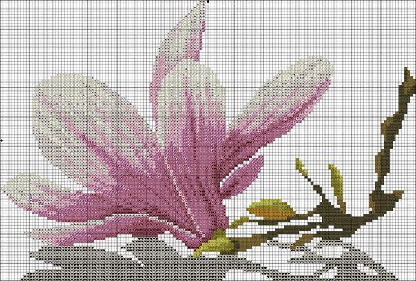 Tryptyk magnolia (3/5)