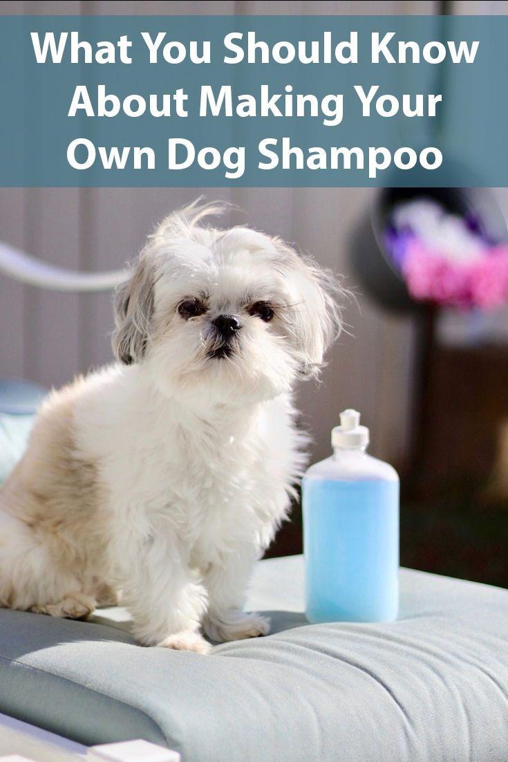 15 Homemade Dog Shampoo Recipes Dog Shampoo Homemade Dog
