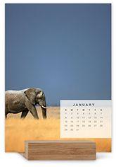 Easel Calendars | Shutterfly