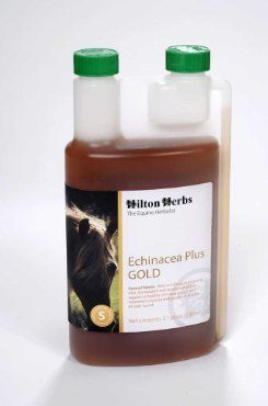Echinacea Plus Gold for horses - 2.1 Pint by Hilton Herbs Ltd. $46.99. Size: 2.1 Pint. Rich in echinacea purpurea root to help support your horses immune system and response at all times. If necessary use our soothing herbal ditton ( thuja) cream if the skin requires a topical application. For use in equines only. Recommended to support a healthy immune system in horses and ponies of all ages.  Ingredients: Echinacea Purpurea; Gotu Kola Herb; Milk Thistle Seed ; Cleaver Herb...
