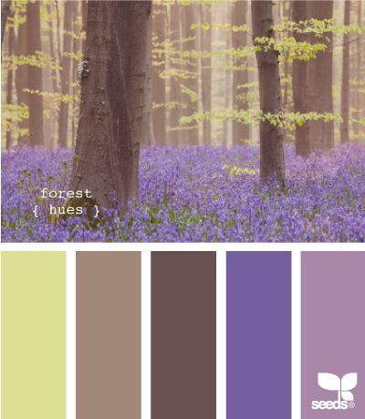 forest hues: Girls Bathroom Colors, Bathroom Design Palettes, Design Seeds, Colors Palettes Brown Purple, Forests Hue, Colors Schemes, Forests Rooms Colors, Forests Colors Palettes, Girls Rooms