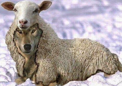 Visite! Cristo está dentro de Nós!: Ódio, uma incoerência Cristã http://paulinopax.blogspot.com.br/2016/06/odio-uma-incoerencia-crista.html