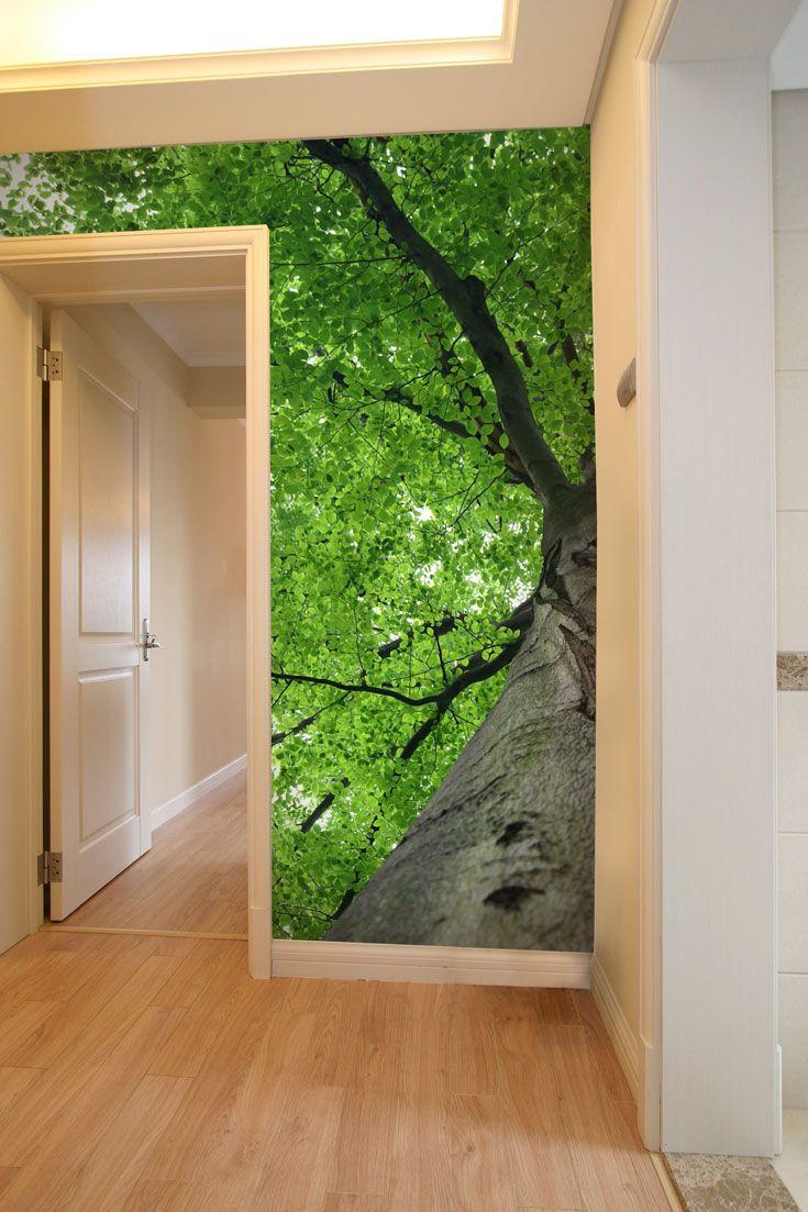 Fototapeta na stenu - koruna stromov | DIMEX