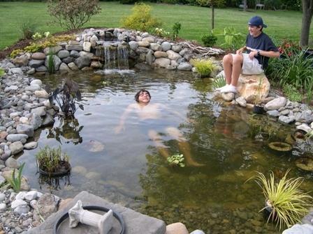 178 Best Ponds In The Garden Images On Pinterest