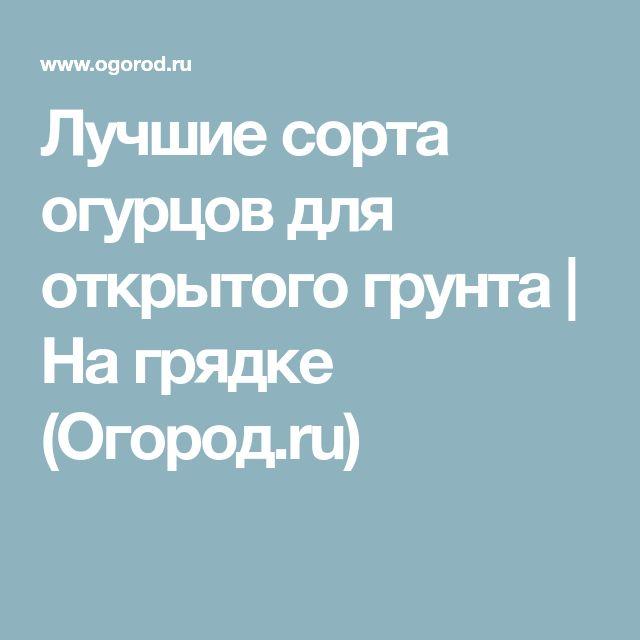 Лучшие сорта огурцов для открытого грунта   На грядке (Огород.ru)