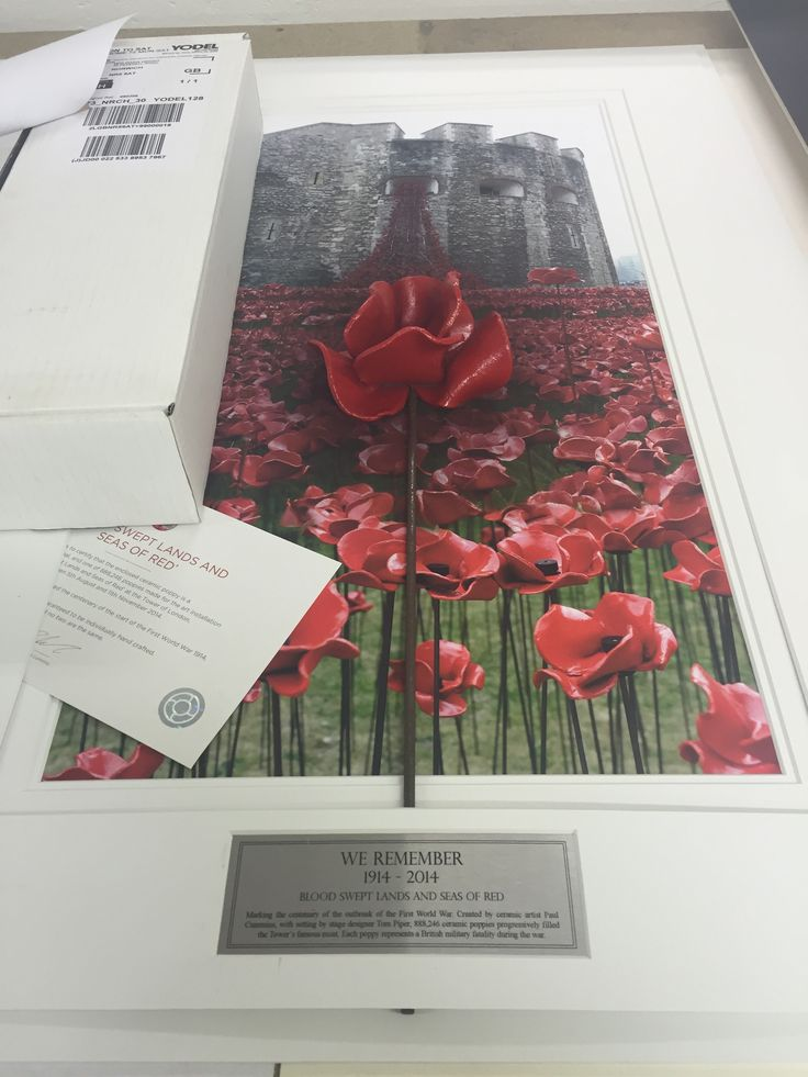 Best Ceramic Poppy Display Images On Pinterest Poppies Tower - Tower of london river of poppies