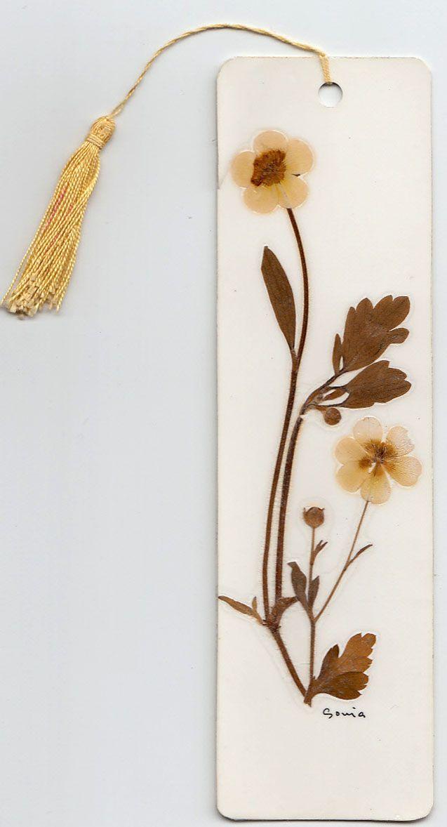 Otro bonito marcapáginas hecho con flores secas prensadas, obra de alguna Sonia...