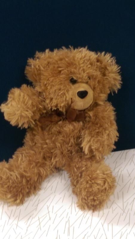 Found on 31 Aug. 2016 @ Brisbane International AIrport. Teddy Bear found in…