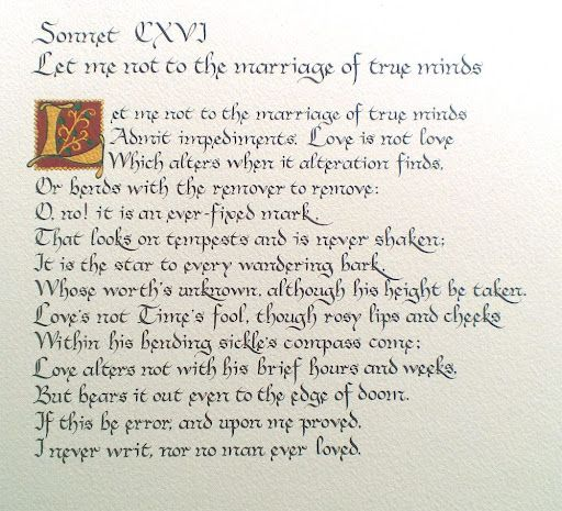 the nature of love in sonnets The quiet, all-consuming love in pablo neruda's sonnet xvii  during his second marriage the nature of their love, which was hidden for so long, seeps through in sonnet xvii's lines about .