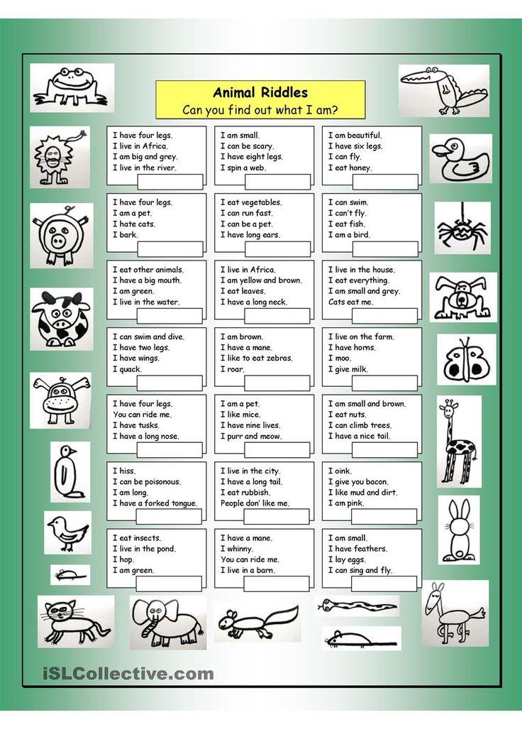 riddles animals and worksheets on pinterest. Black Bedroom Furniture Sets. Home Design Ideas
