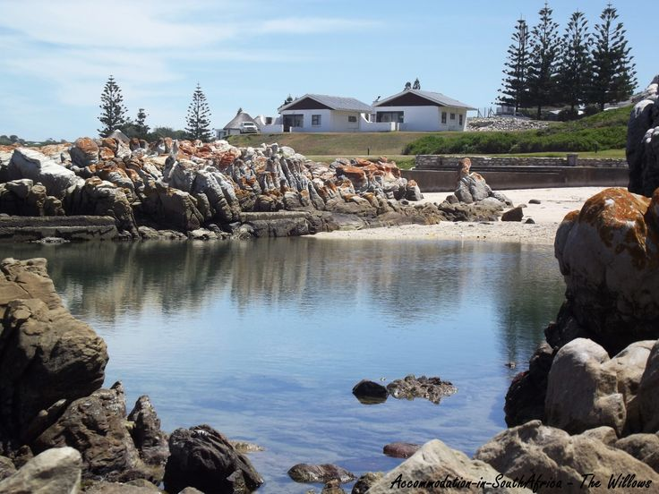 Beautiful scenery at The Willows. Camping and Self Catering. Accommodation Port Elizabeth.