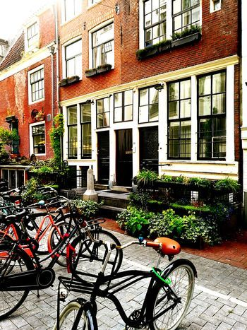 City Life Sidewalk Bicycle Architecture Building Exterior Built Structure Window House Outdoors Day No People Steetphotography Green Oasis City Window Reflection City