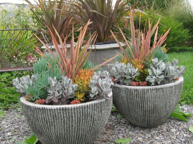 Container garden tips with bob hyland gardens bobs and - Container gardening basics ...