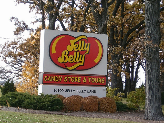 Pin by Dora the Explorer on Jelly Belly Jelly Beans | Pinterest