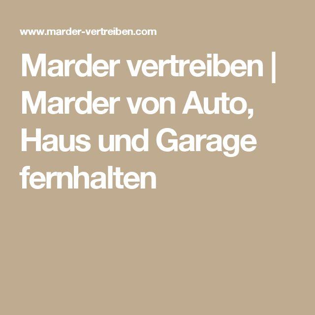 Marder vertreiben | Marder von Auto, Haus und Garage fernhalten
