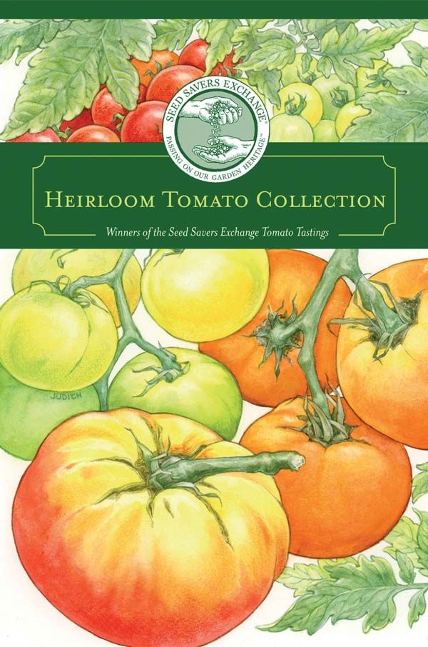 15 Best Tomato Collections Images On Pinterest Heirloom 400 x 300
