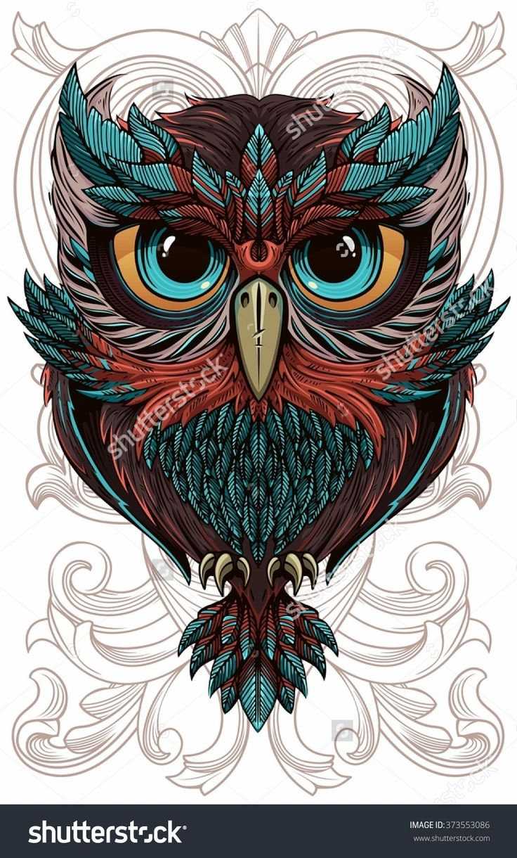 wise owl. Vector