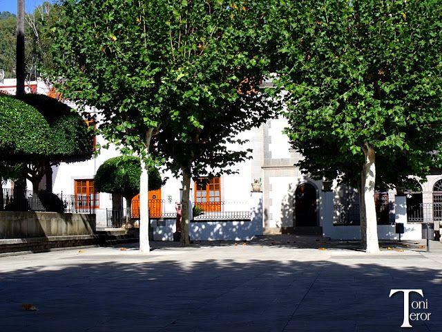 El reflejo de mi mirada: Sombra en La Alameda