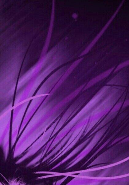 #Purple                                                                                                                                                                                 Plus
