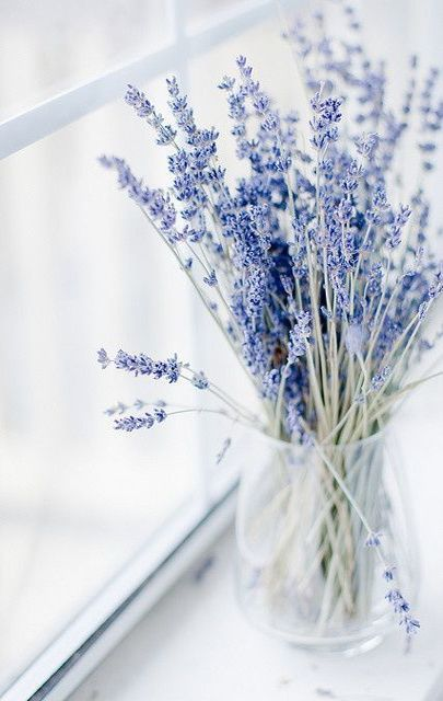 Lavender In Jar For Purple Or Lilac Themed Wedding