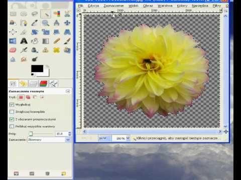 Jak zrobić obrazek bez tła w gimpie - gimp tutorial pl