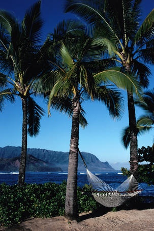 princeville hindu singles Princeville makai golf club offers incredible tennis rates for hotel guests, members and non-members visit our website for details.