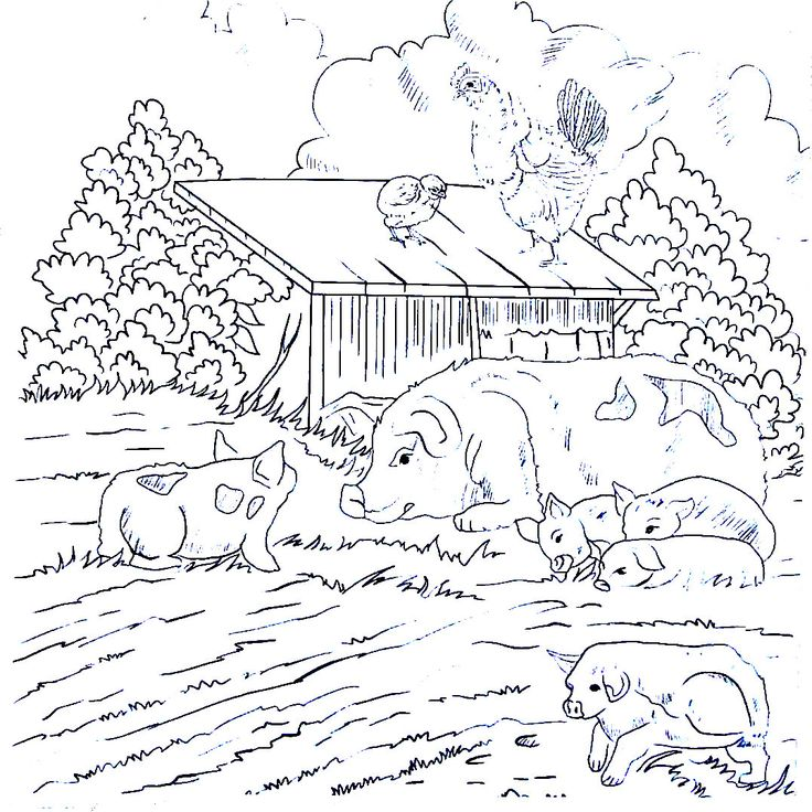 38 best Living in the Country Coloring Book Pages images on ...
