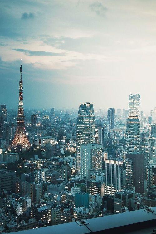 Japan Tokyo sunset || Dan Kamminga