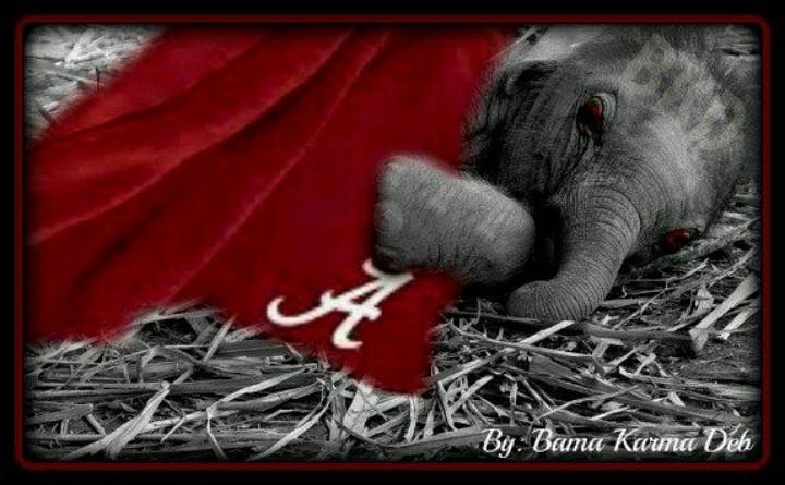 Crimson Dreams: Alabama Rolls, Crimson Dreams, Alabama Style, Alabama Football, Rolls Tide, Crimson Tide, Alabama Crimson, Alabama Stuff, Sweet Dreams