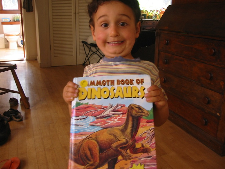 They fight and eat and fight and eat.  We LOVE the dinosaur book.  Oy vey.: Oy Vey, Dinosaurs Books