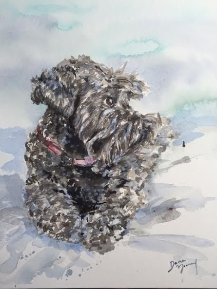 "Custom Pet Portrait, 5"" x 7"", $90 by me!  http://www.danamooney.com"
