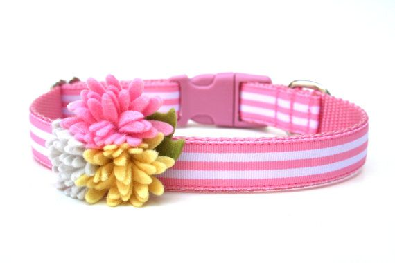 """Stripe Dog Collar 3/4"""" or 5/8"""" Pink Striped Dog Collar with Flowers on Etsy, $21.00"""