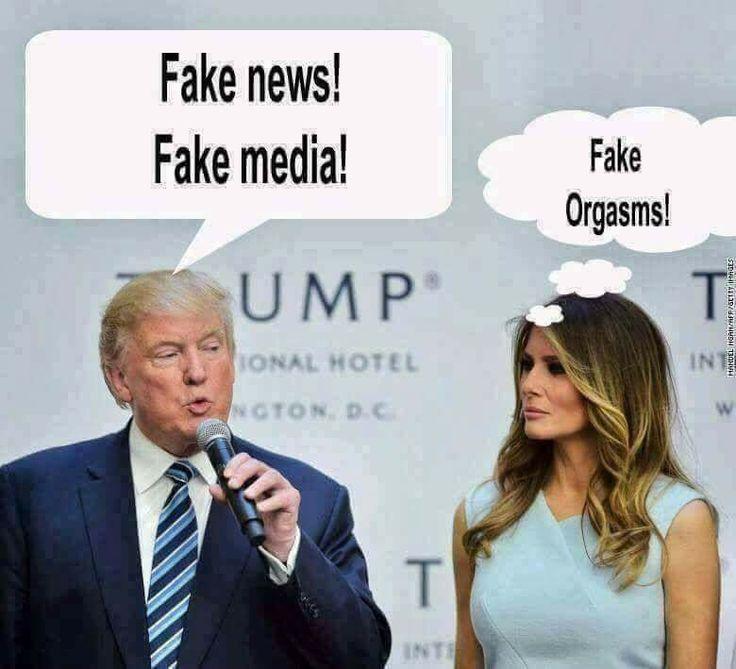 25 Best Memes About Trump Fake News: Best 25+ Trump Idiot Ideas On Pinterest