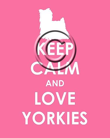 Keep Calm and Love Yorkies :-) ...........click here to find out more http://googydog.com