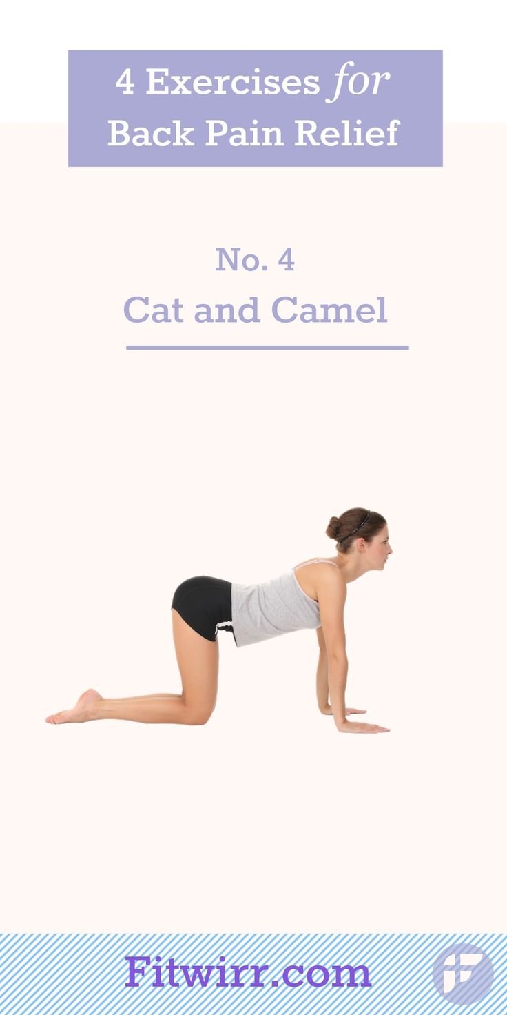 18 best images about Back Pain Relief Exercises on ...