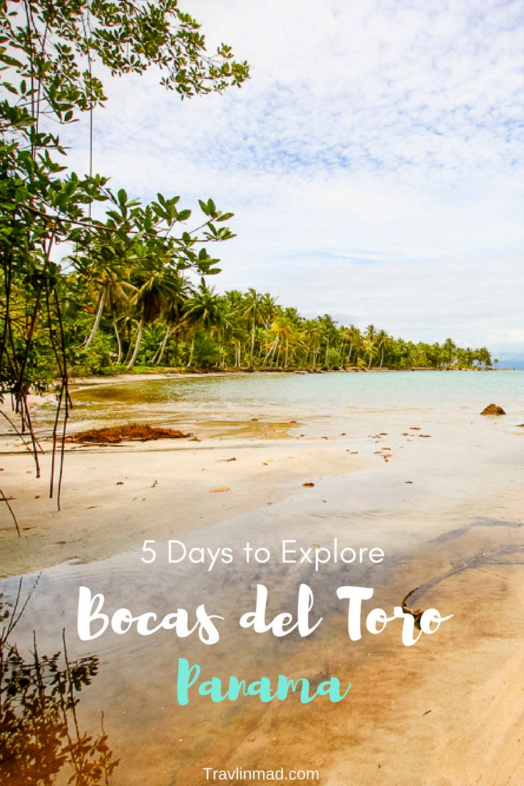 We weren't sure what to expect as our tiny plane touched down in Bocas del Toro, Panama, but the turquoise water surrounding us was a great start. There are so many things to do here, but you may want to do nothing at all! Try this 4-5 day itinerary for a perfect trip. | Bocas del Toro to Puerto Viejo, Panama to Costa Rica border crossing, Bocas del Toro things to do, Starfish Beach Bocas Town, What to Do in Panama, Things to Do Bocas del Toro Panama
