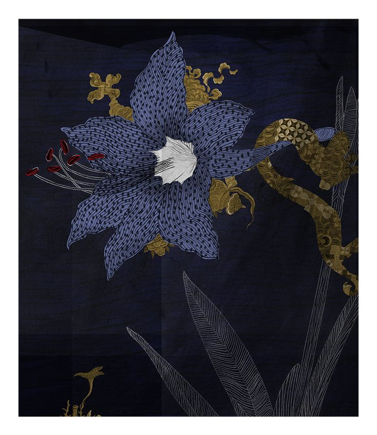 Kim Meek, Belladonna, 2013, from Dominion: an incomplete, unscientific and fanciful florilegium inspired by the library of JT Mackelvie