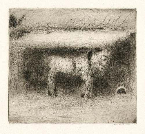 Bohuslav Reynek Koník / Tit suchá jehla / dry point 17,5 x 19 cm, otisk z původní desky, 50. léta