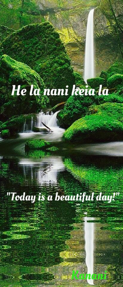 """Today is a beautiful day"" -Hawaiian language and lifestyle!  Happy Friday to you all!"