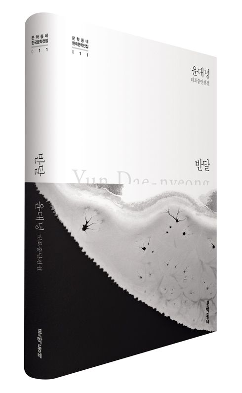 윤대녕 대표중단편선 『반달』 | 문학동네 한국문학전집 011