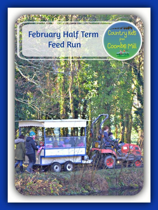 February half term feed run at Coombe Mill Holidays