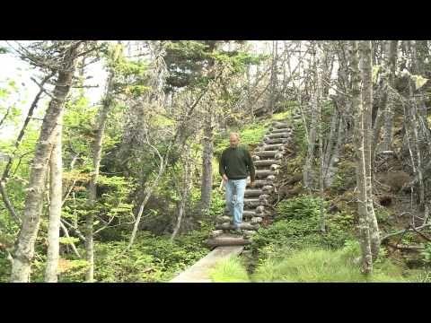 Skerwink Trail on Eastlink TV's Discover NL - YouTube