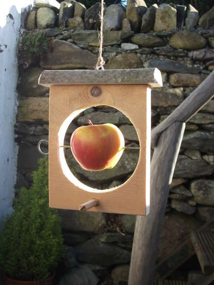 Easy bird feeder that's perfect for those fruits way past human consumption. For Cadettes earning their Woodworker badge.
