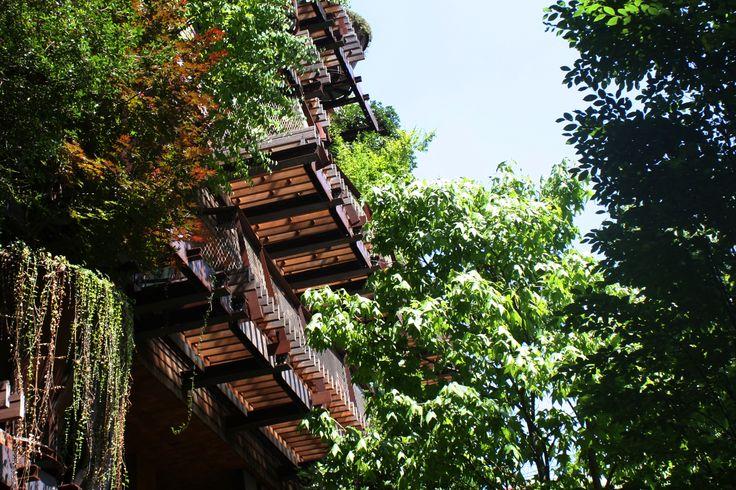 25Verde. Torino.  #Architecture