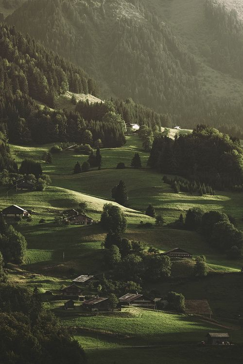 Pin by millie garrett on adventure nature pinterest for Evergreen landscapes christchurch
