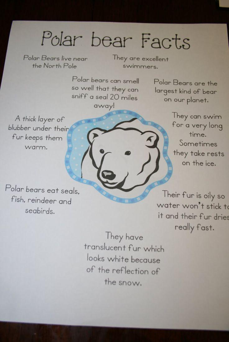 Best 20 Polar Bear Crafts Ideas On Pinterest Polar