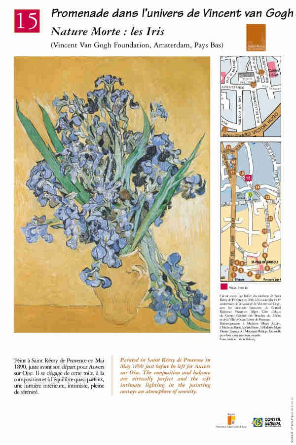 """Nature morte: les iris"" #peinture #provence #vangogh #saintremydeprovence"