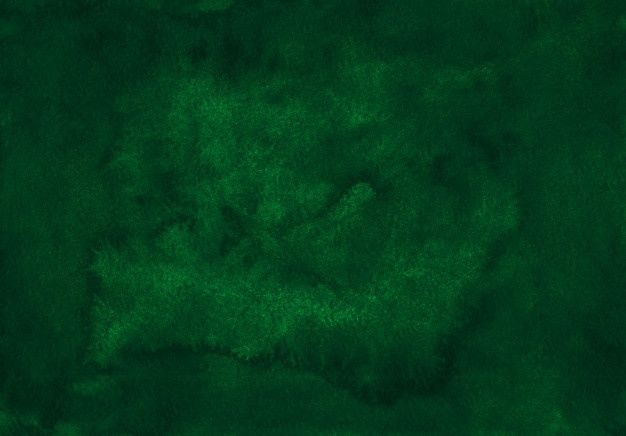Canvas 5446 Forest Green Green Texture Dark Green Background Solid Color Backgrounds