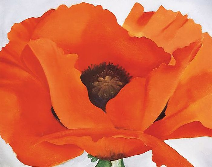 """Classic """"Red Poppy"""" Georgia O'Keefe painting  Her poppy paintings were the first art I loved in elementary school."""